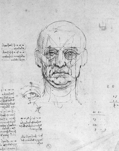 Course Image Bases Cerebrales del procesamiento de caras