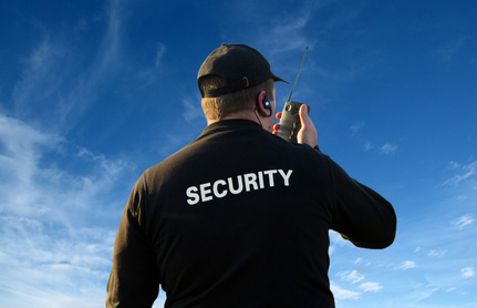 Course Image Seguridad pública y privada: límites constitucionales