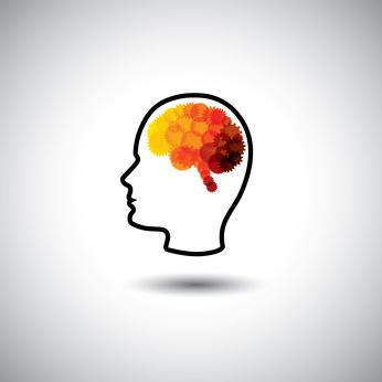 Course Image Organización y desarrollo de la memoria semántica