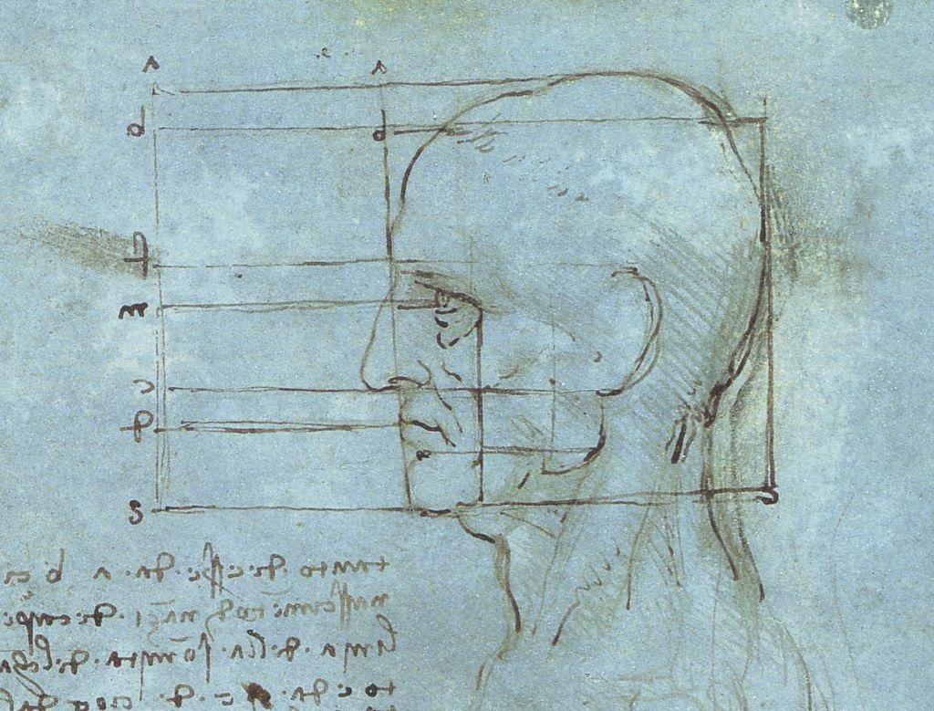 Course Image Técnicas de morfometría aplicadas al estudio de la anatomía cerebral humana