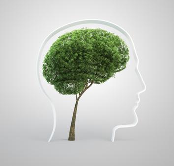 Course Image La valoración neuropsicológica y el efecto de la escolaridad, edad y cultura